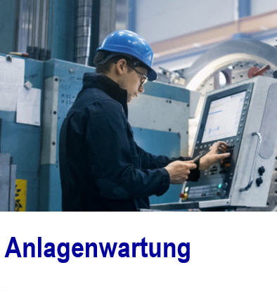 Wartungsinformationen in nur einem System Wartungsinformationen, Software,Wartung,informationen